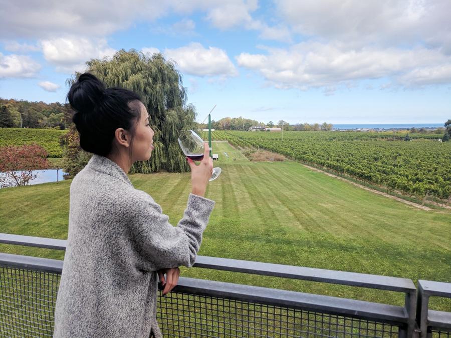 Winery - 4
