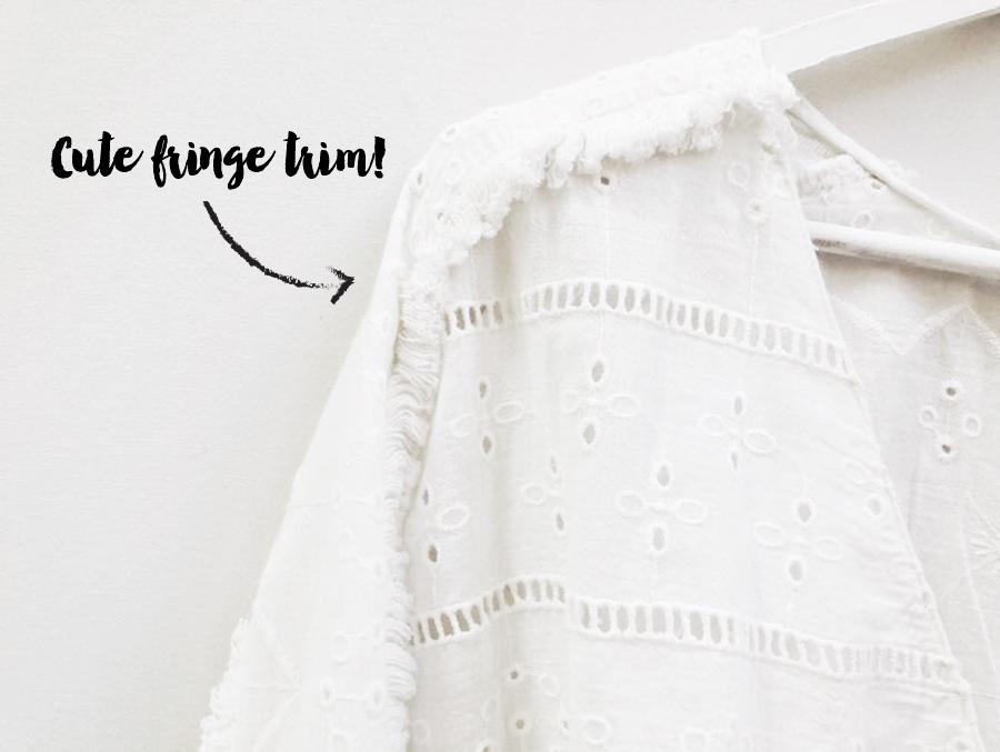 MyObsessionMonday - Zara Embroidered - trim